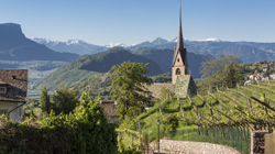 Farm Holidays in The south of South Tyrol