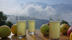 Home-made fruit juices of South Tyrol