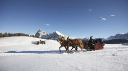 Farm holiday in South Tyrol in January