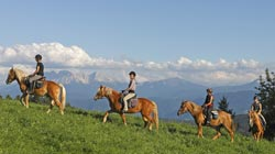 Holiday on a riding farm in South Tyrol