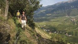 Farm holidays in the Vinschgau