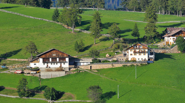 Farm holidy in South Tyrol