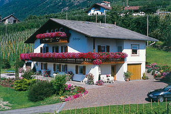 Klostergut - Tschars  - Kastelbell-Tschars - Farm Holidays in South Tyrol  - Vinschgau