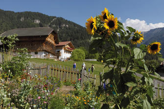 Pristingerhof - Seis  - Kastelruth - Farm Holidays in South Tyrol  - Dolomiten