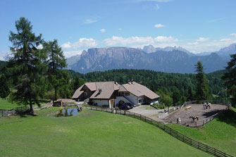 Pferdehof Flachenhof  - Ritten - Farm Holidays in South Tyrol  - Südtirols Süden