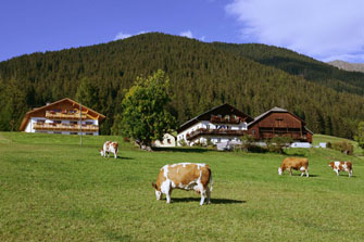 Mahrhof - Taisten  - Welsberg-Taisten - Farm Holidays in South Tyrol  - Dolomiten