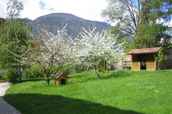Bachlechner - Aufhofen  - Bruneck - Farm Holidays in South Tyrol  - Dolomiten