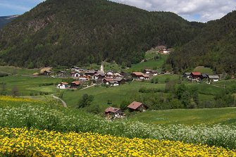 Nuierhof  - Kastelruth - Farm Holidays in South Tyrol  - Dolomiten