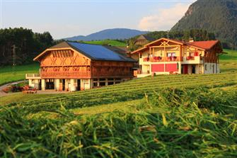 Radauerhof  - Kastelruth - Farm Holidays in South Tyrol  - Dolomiten