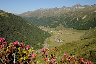 Gamsegghof  - Graun im Vinschgau - Farm Holidays in South Tyrol  - Vinschgau
