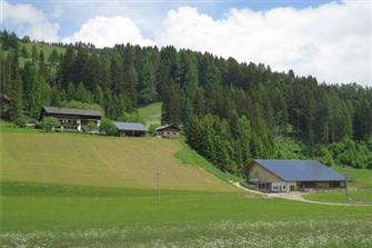 Baumannhof  - Toblach - Farm Holidays in South Tyrol  - Dolomiten