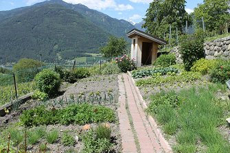 Trinnerhof - Raas  - Natz-Schabs - Farm Holidays in South Tyrol  - Eisacktal