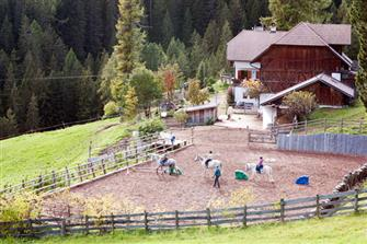 Flachenhof  - Ritten - Farm Holidays in South Tyrol  - Südtirols Süden
