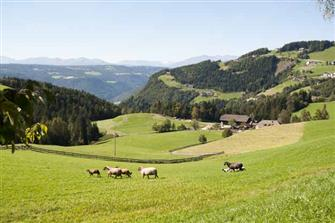 Ronacherhof - Klobenstein  - Ritten - Farm Holidays in South Tyrol  - Südtirols Süden