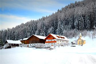 Weliserhof  - St. Lorenzen - Farm Holidays in South Tyrol  - Dolomiten