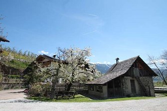 Tschiedererhof  - Vahrn - Farm Holidays in South Tyrol  - Eisacktal