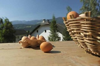 Ausluger  - St. Lorenzen - Farm Holidays in South Tyrol  - Dolomiten