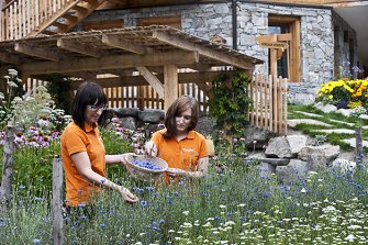 Bergila  - Pfalzen - Farm Holidays in South Tyrol  - Dolomiten