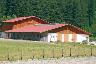 Mairhof  - Sand in Taufers - Farm Holidays in South Tyrol  - Dolomiten