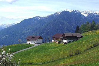 Neuhaus Hof  - Sand in Taufers - Farm Holidays in South Tyrol  - Dolomiten
