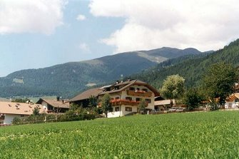 Reiterhof Grasspeinten  - Pfalzen - Farm Holidays in South Tyrol  - Dolomiten
