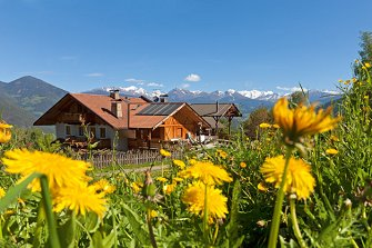 Oberplattner-Hof - St. Andrä  - Brixen - Farm Holidays in South Tyrol  - Eisacktal