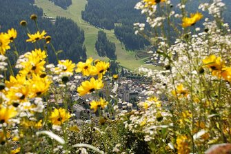 Gadenhof  - Innichen - Farm Holidays in South Tyrol  - Dolomiten