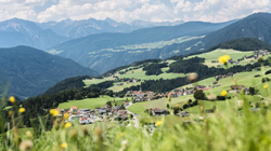 Farm Holidays in Kronplatz