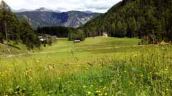 Farm holidays in Franzensfeste