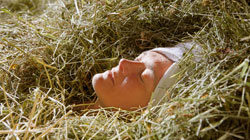 Relax in a hay bath