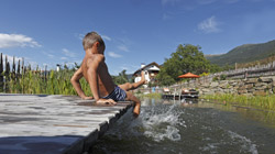 Bathing fun for families in farm swimming pools or natural ponds on 'Red Rooster' farms in South Tyrol