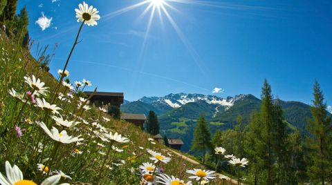 Farm Holidays in Tauferer Ahrntal