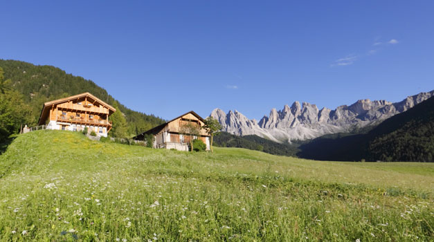 Holiday in June in the Italian Alps
