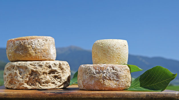 Cheese from South Tyrol – both tasty and healthy
