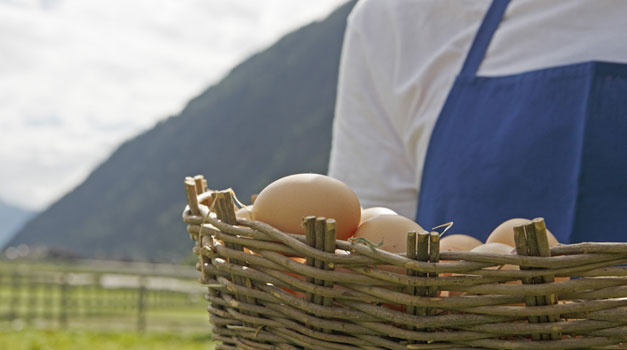 Easter farm holiday in South Tyrol