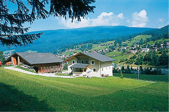 Minert  - St. Ulrich - Farm Holidays in South Tyrol  - Dolomites