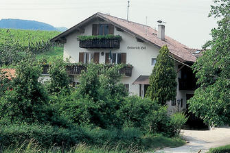 Heinrich-Hof - St. Michael  - Eppan a. d. Weinstraße - Farm Holidays in South Tyrol  - Bozen and surroundings