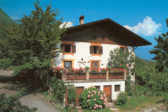 Wildhof  - Algund - Farm Holidays in South Tyrol  - Meran and surroundings
