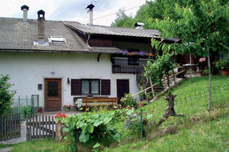 Reisner-Hof  - Lajen - Farm Holidays in South Tyrol  - Dolomites