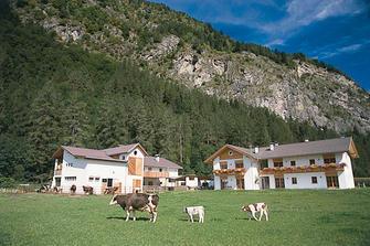 Peintenhof  - Sand in Taufers - Farm Holidays in South Tyrol  - Dolomites
