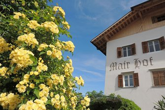 Mairhof - Missian  - Eppan a. d. Weinstraße - Farm Holidays in South Tyrol  - Bozen and surroundings