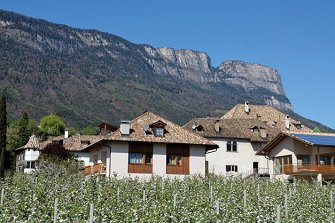Pizzol-Hof - St. Michael  - Eppan a. d. Weinstraße - Farm Holidays in South Tyrol  - Bozen and surroundings