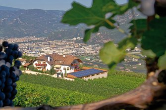 Lanserhof - Girlan  - Eppan a. d. Weinstraße - Farm Holidays in South Tyrol  - Bozen and surroundings