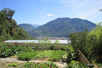 Messnerhof  - Bozen - Farm Holidays in South Tyrol  - Bozen and surroundings
