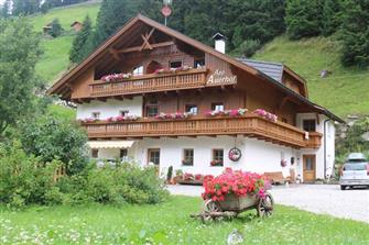 Auerhof  - Sand in Taufers - Farm Holidays in South Tyrol  - Dolomites