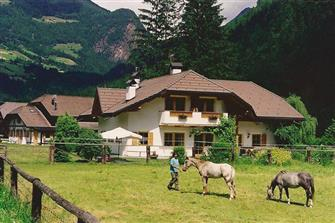 Uhle-Hof  - Sand in Taufers - Farm Holidays in South Tyrol  - Dolomites