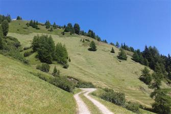 Aussermairhof  - Sand in Taufers - Farm Holidays in South Tyrol  - Dolomites