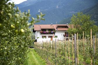 Sackgut - Tschars  - Kastelbell-Tschars - Farm Holidays in South Tyrol  - Vinschgau
