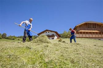 Pliegerhof - Seis  - Kastelruth - Farm Holidays in South Tyrol  - Dolomites