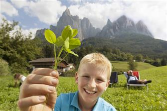 Pitzelterhof - Seis  - Kastelruth - Farm Holidays in South Tyrol  - Dolomites